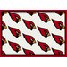 NFL Team Repeat Novelty Rug