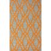 Brilliance Orange Viv Plush Rug