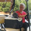 Lookout Golf Cart Pet Carrier