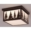 Yellowstone 2 Light Outdoor Flush Mount