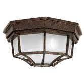 Two Light Outdoor Flush Mount in Tortoise