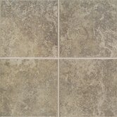 "Castle De Verre 10"" x 13"" Wall Field Tile in Grey Stone"