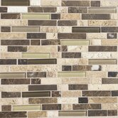 "Stone Radiance 12"" x 12"" Random Mosaic Tile Blend in Morning Sun / Tortoise / Mushroom (10 Pieces)"