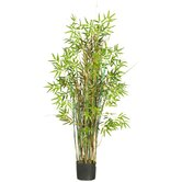 "60"" Silk Bamboo Grass Plant in Green"