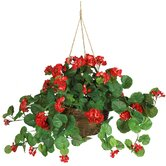 Red Silk Geranium Plant with Hanging Basket