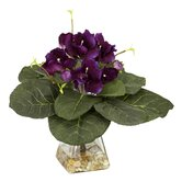 Gloxinia with Vase Silk Plant