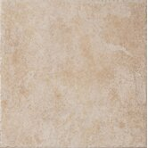 "Safari 16"" x 16"" Floor Field Tile in Botswana"