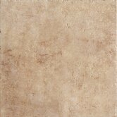 Walnut Canyon 20&quot; x 20&quot; Field Tile in Golden
