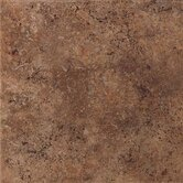 Vallano 18&quot; x 18&quot; Glazed Field Tile in Dark Chocolate