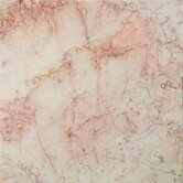 "Natural Stone 12"" x 12"" Marble Tile in Coral Notte Rose"