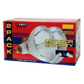 Reflector Flood Light Bulb (Set of 2)