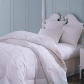 Majestic Cotton Down Comforter in White