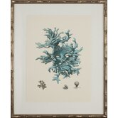Turquoise Coral III Art