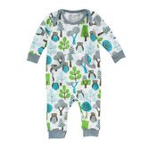 Owls Boy's Playsuit in Sky