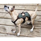 Trekking Dog Harness