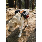 Wander Dog Pack in Black / Orange