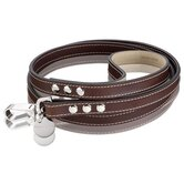 Royal Handmade British Saddle Leather Dog Leash