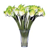 Floral Three Dozen Calla