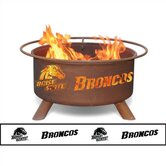 Collegiate Fire Pit