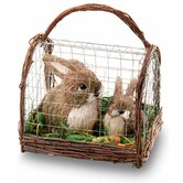 Bunny Coop