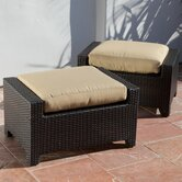 Delano Club Ottoman with Cushion (Set of 2)