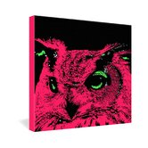 Romi Vega Pink Owl Gallery Wrapped Canvas