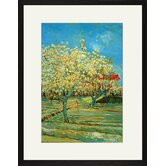 Orchard with Cypress by Van Gogh Framed and Matted Print