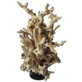 Mulberry Root Free Form Statue on Wood Base