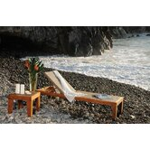 Leeward Islands Chaise Lounge and End Table Set