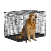 iCrate Double-Door Dog Crate