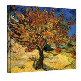 Vincent Van Gogh ''Mulberry Tree'' Canvas Art