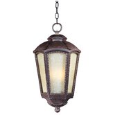Pacific Heights VX Outdoor Hanging Lantern in Mottled Leather