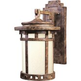 Dark Sky Outdoor Wall Lantern in Sienna