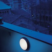 708Pantarei 190 Indoor/Outdoor Wall and Ceiling Light