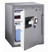 Combination Commercial Fire Safe [30 CuFt]