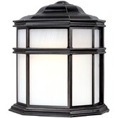 Skyler Outdoor Wall Lantern in Antique Bronze
