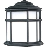 Skyler Outdoor Wall Lantern in Black