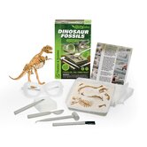 Dinosaur Fossils Science Set