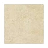 Costa D'Avorio 17&quot; x 17&quot; Floor Tile in Beige
