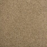 Legato Touch Carpet Tile in Tradewinds
