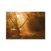 "Magical Sunshine Printed Canvas Art - 28"" X 40"""