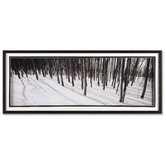 "Enchanted Forest Framed Print Art - 16"" X 40"""
