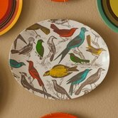 Ornithology Tray