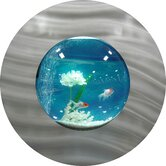 Round Bubble Aquarium