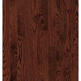 Dundee Plank 3-1/4&quot; Solid Red / White Oak in Cherry