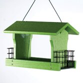 Go Green Ranch Bird Feeder with Suet