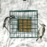 Hanging Suet Haven Feeder