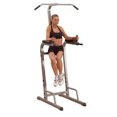 Vertical Knee Raise Dip Station