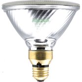 Capsylite PAR38 60 Watt 120 V Narrow Flood Beam Tungsten Halogen Reflector Bulb