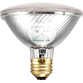 Capsylite PAR30 50 Watt 120 V Narrow Flood Beam Tungsten Halogen Reflector Bulb